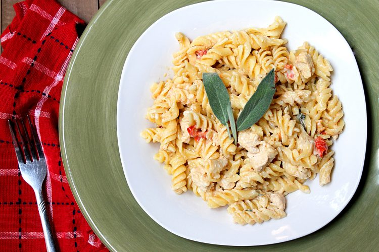 gorgonzola chicken pasta