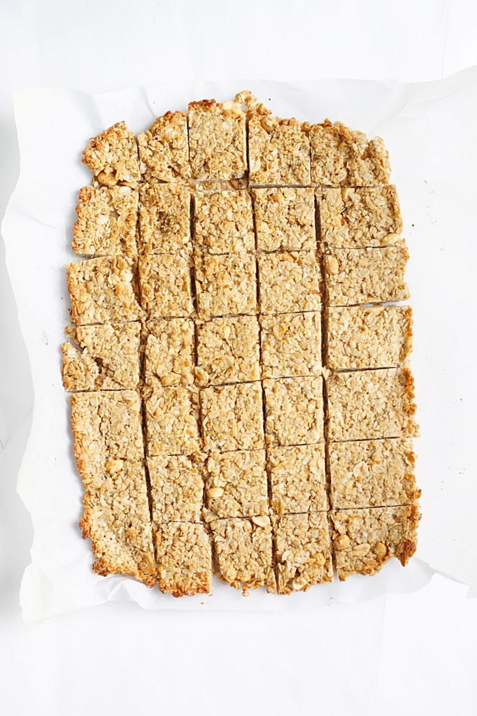 Skinny Peanut Butter Coconut Granola Bites