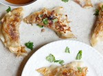Spicy Pork Pot Stickers | Fabtastic Eats