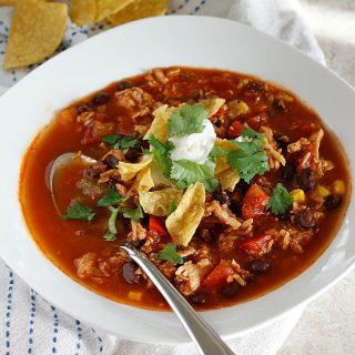 Chicken Tortilla Soup   Fabtastic Eats